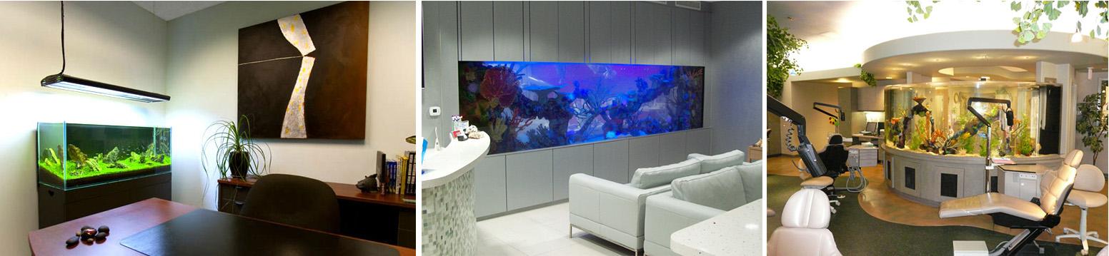 оптимальный размер аквариума