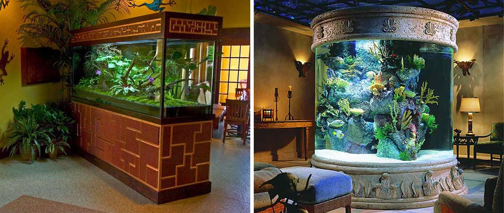 Пресноводный и морской аквариум