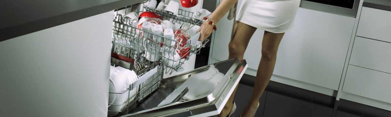 Выбор посудомойки