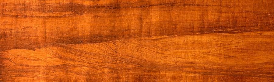 Выбор дерева: породы древесины