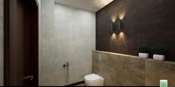 дизайн туалета для руководителя